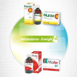 Métabolisme & Energie